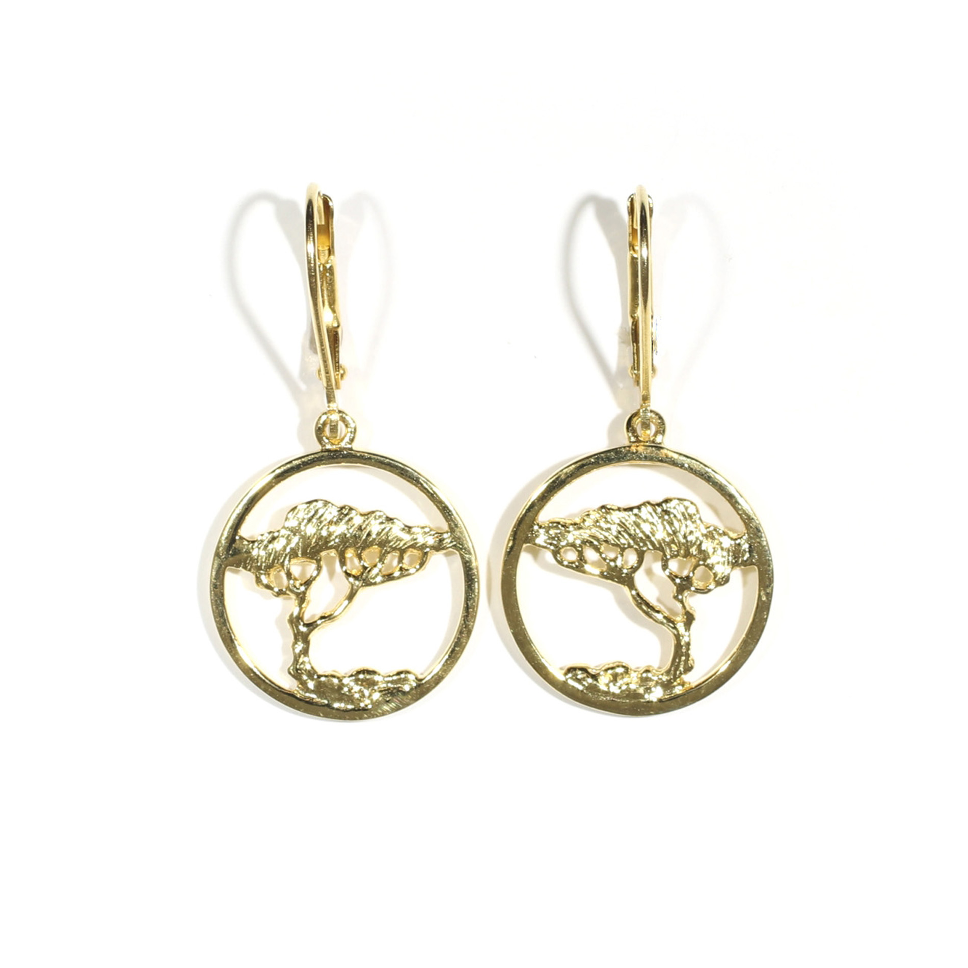 Medium Cypress In A Circle Leverback Earrings